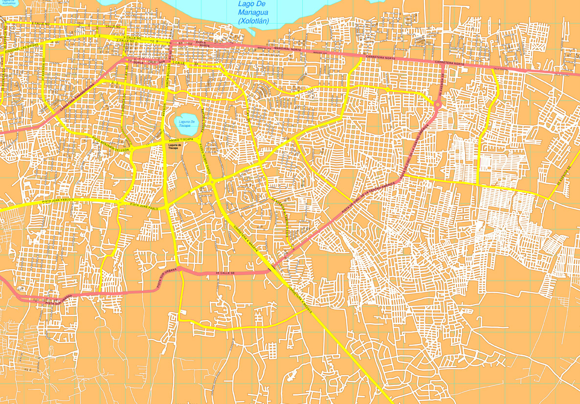 Managua vector map Eps Illustrator City Maps America Order and