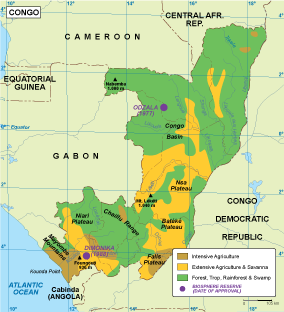 Congo vegetation map