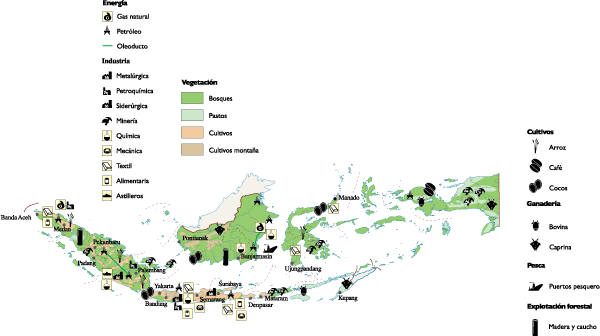 Indonesia Economic map