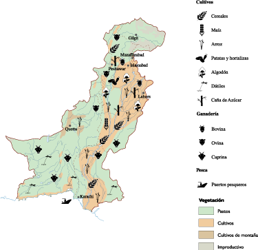 Pakistan Agricultural map