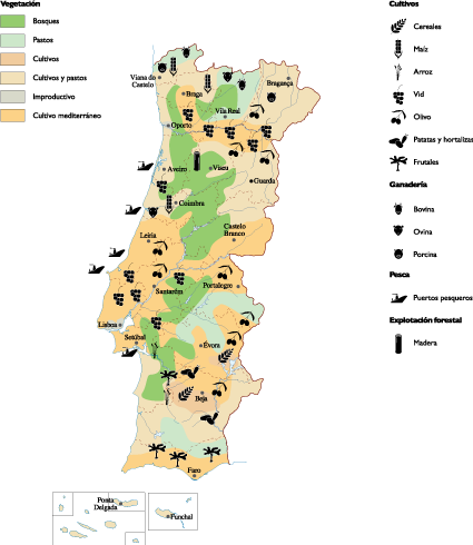 Portugal Agricultural Map Order And Download Portugal - Portugal map