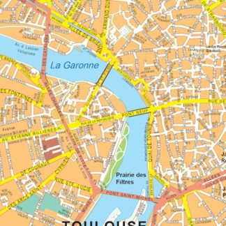 Toulouse vector map